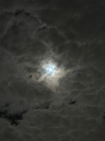 Eno Moon2